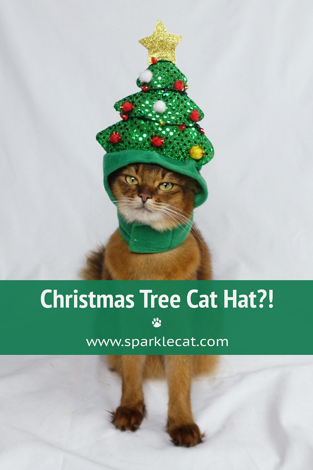 Christmas Tree Hat Outtakes