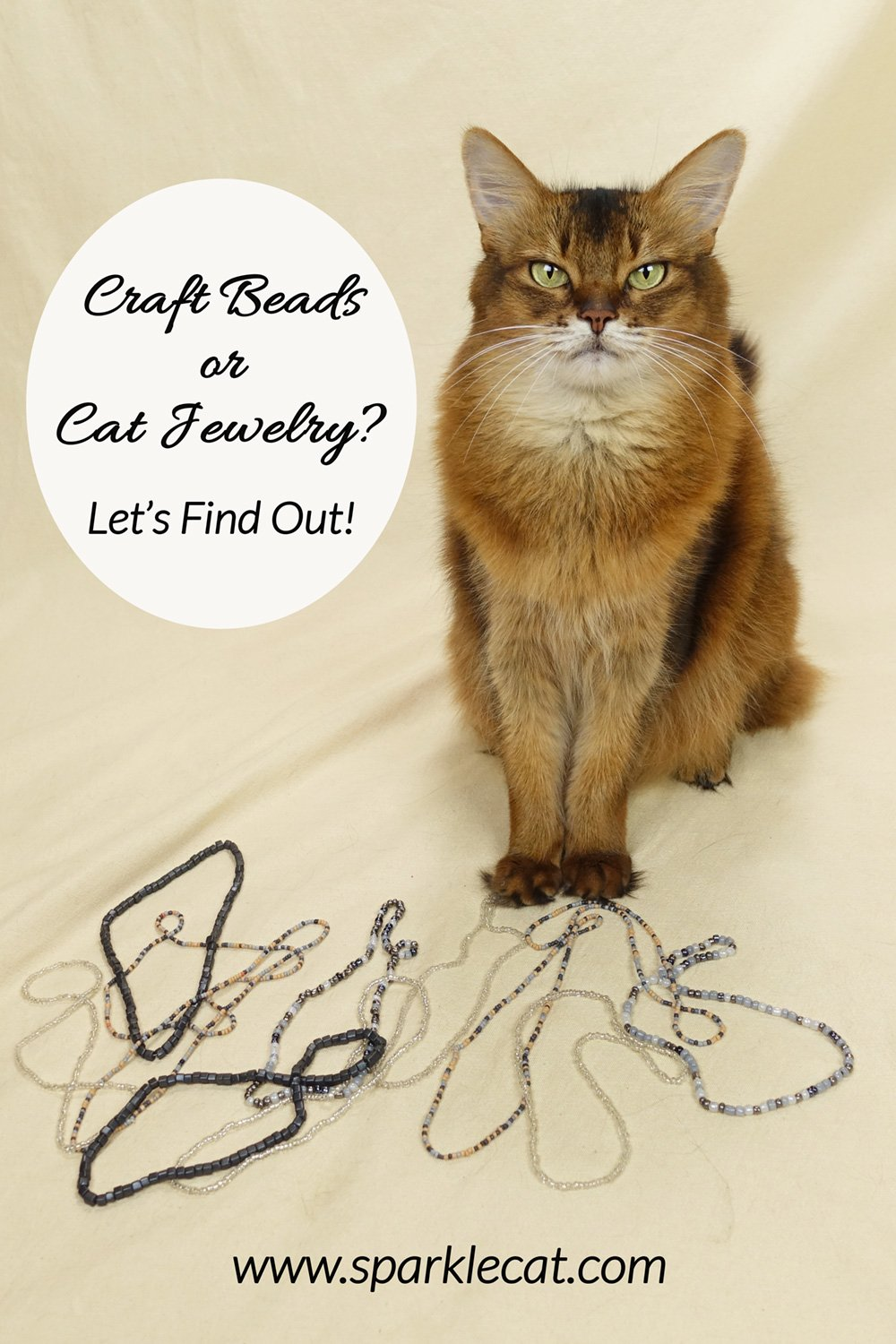 Craft Beads or Cat Jewelry? Let\'s Find Out!