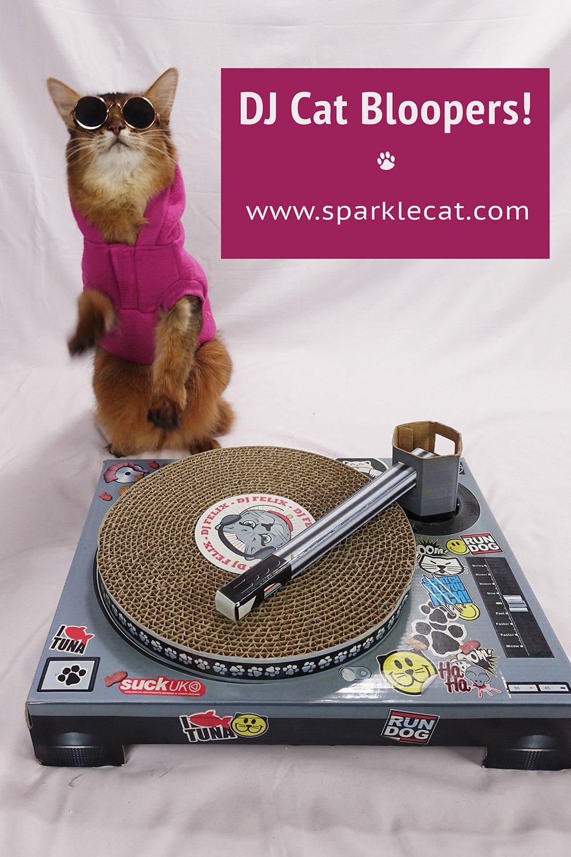 DJ Cat Bloopers