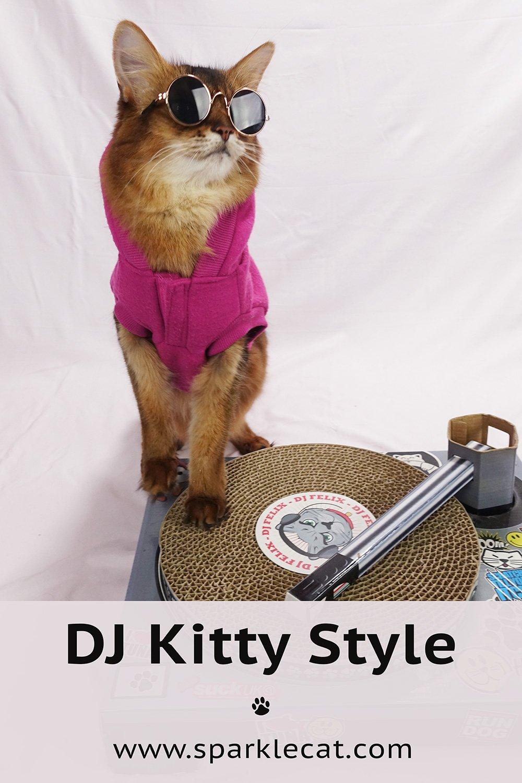 DJ Kitty Style