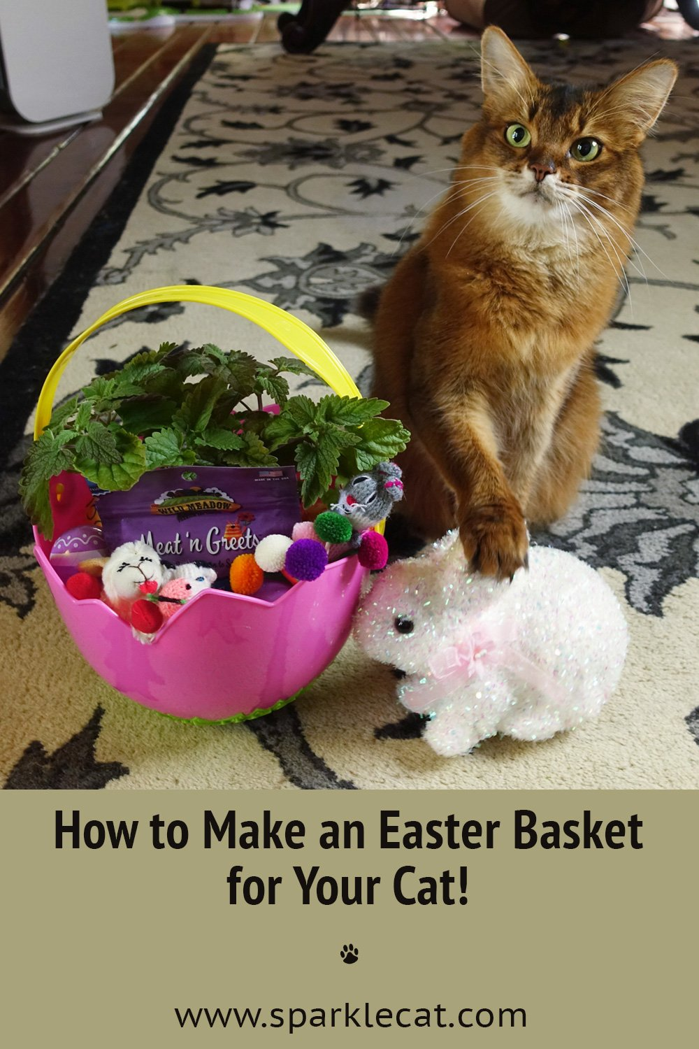 How to Make an Easter Basket for Your Cat