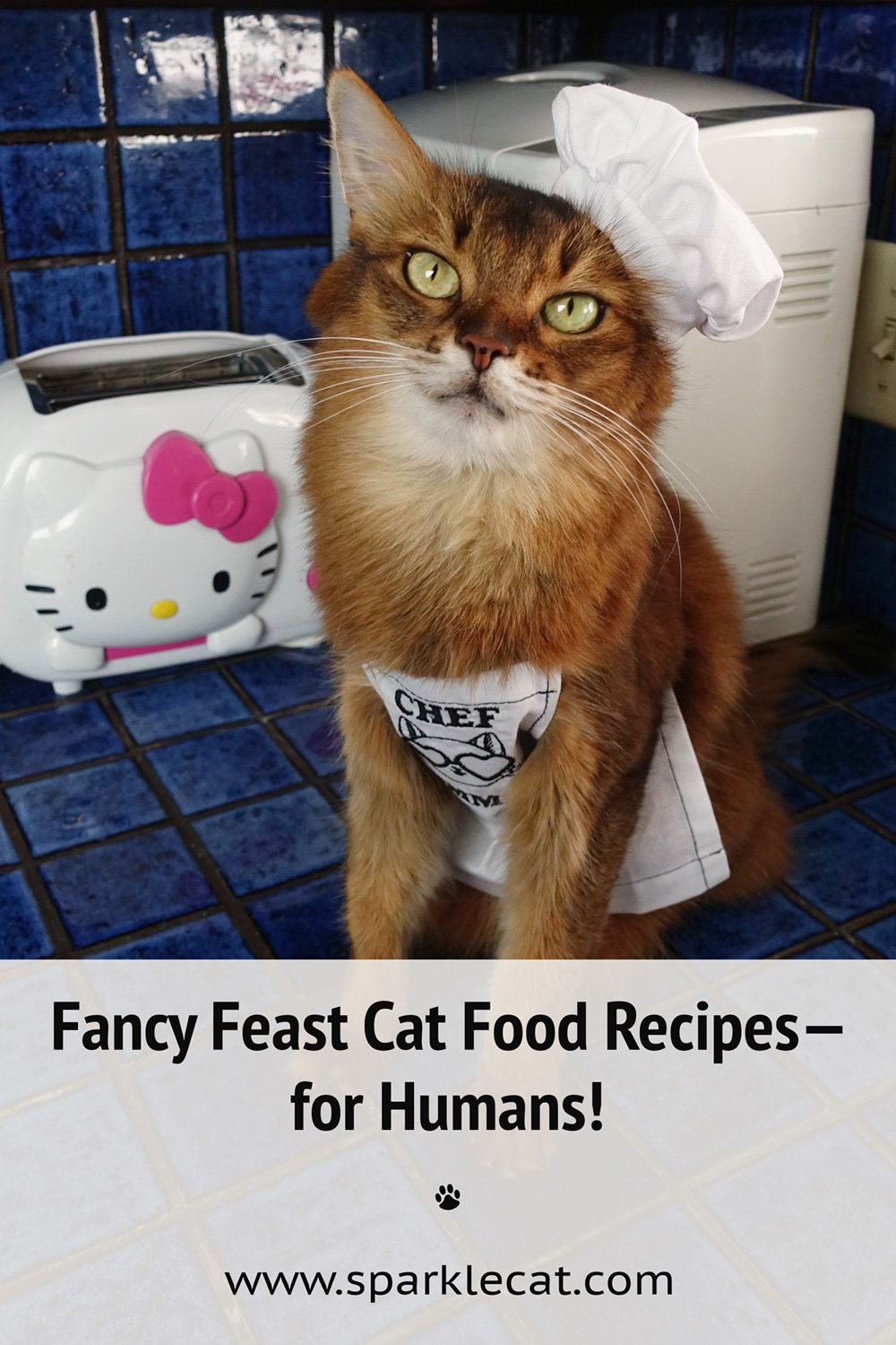 My New Kitchen Role: Chef Cat