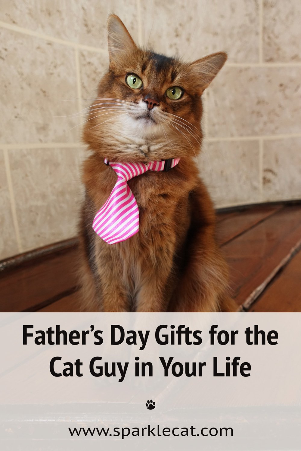 Father\'s Day Gifts for Your Cat Guy - From Etsy!