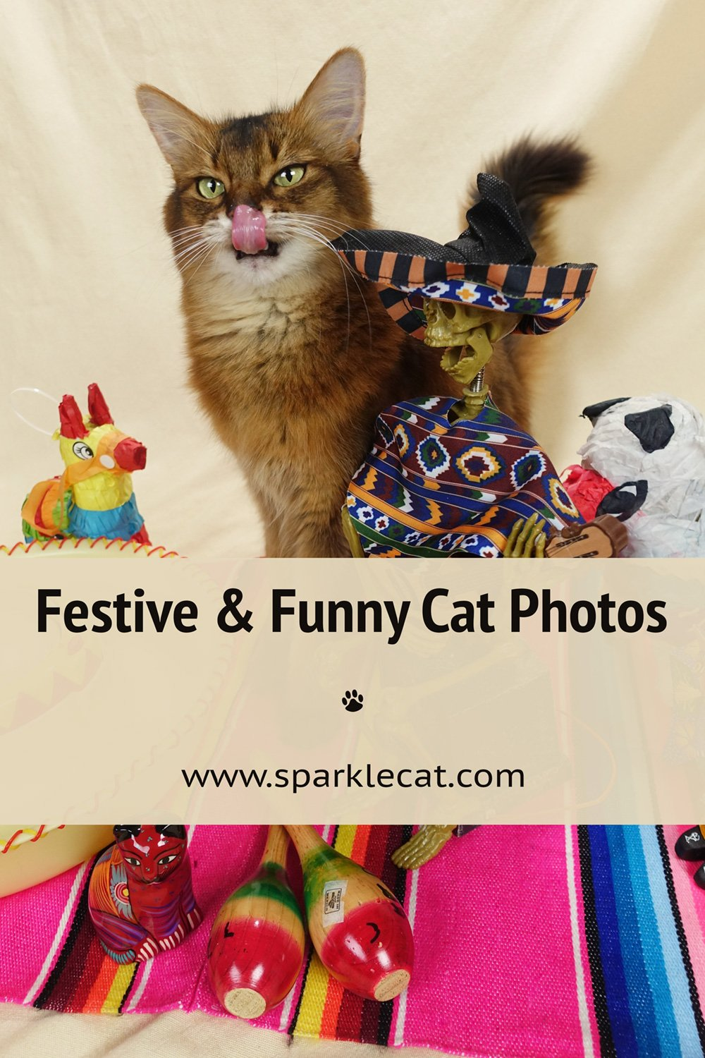 Festive and Funny Outtakes