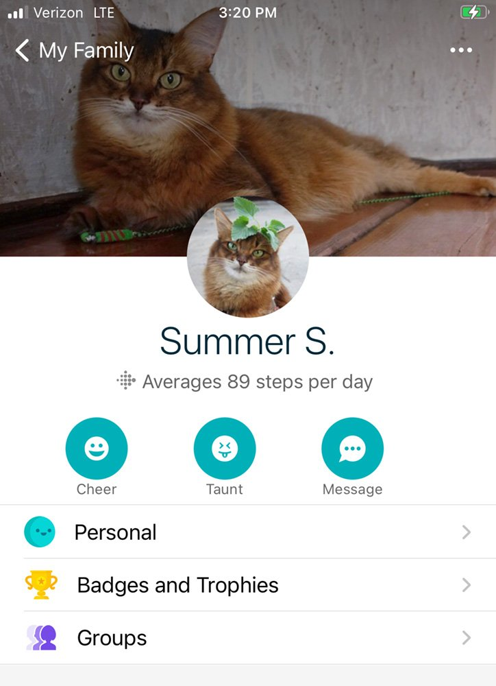 Summer's Fitbit account on app