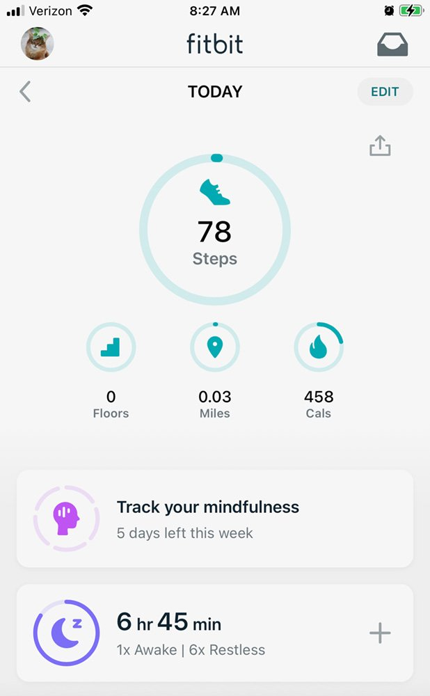 Morning cat Fitbit reading