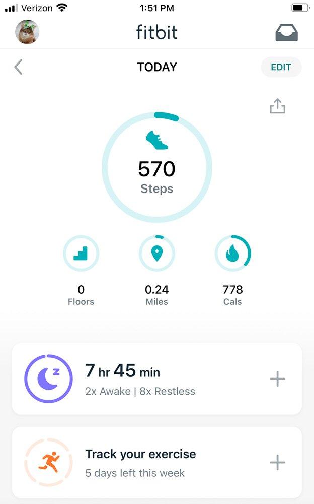somali cat fitness tracker, showing more sleep