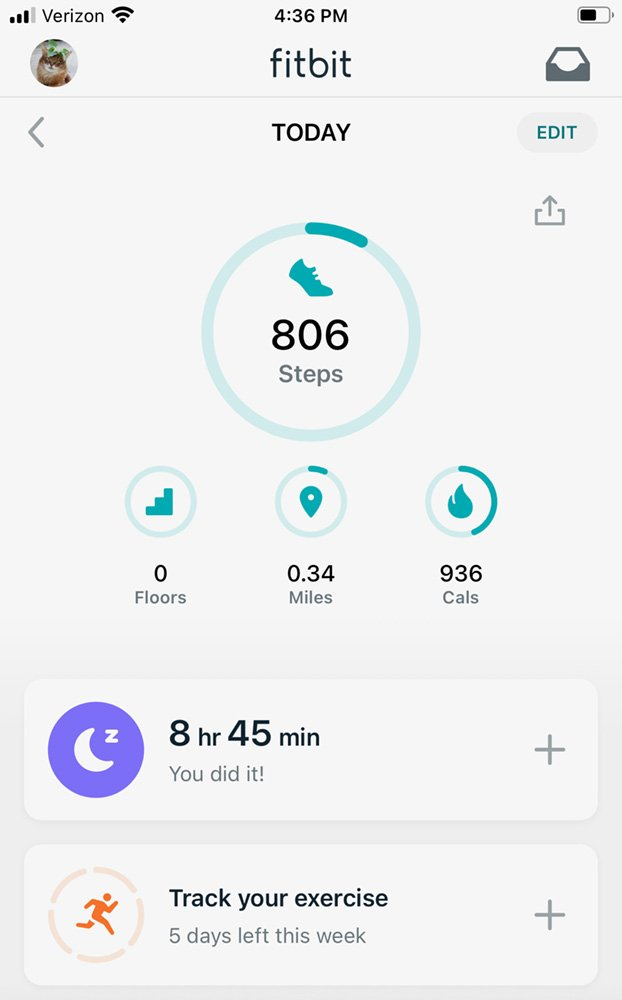 somali cat fitbit tracker with more sleep