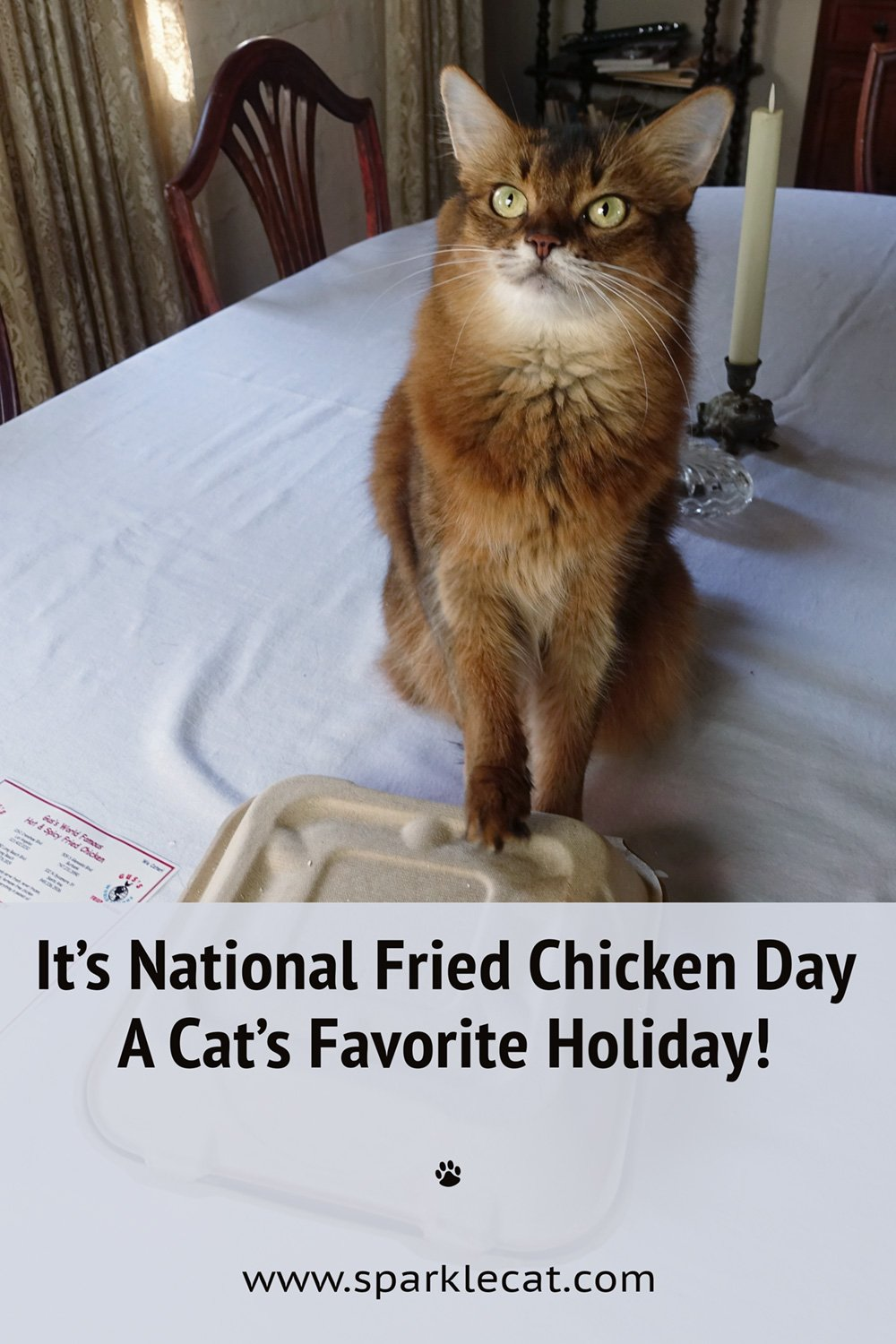 What\'s a Cat\'s Favorite Holiday? National Fried Chicken Day of Course!