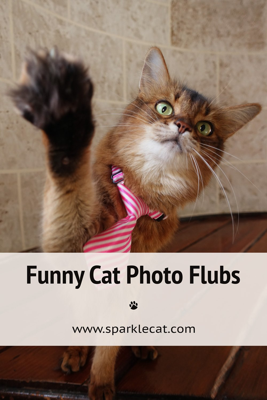 Fun Photos (Not Necessarily Outtakes)