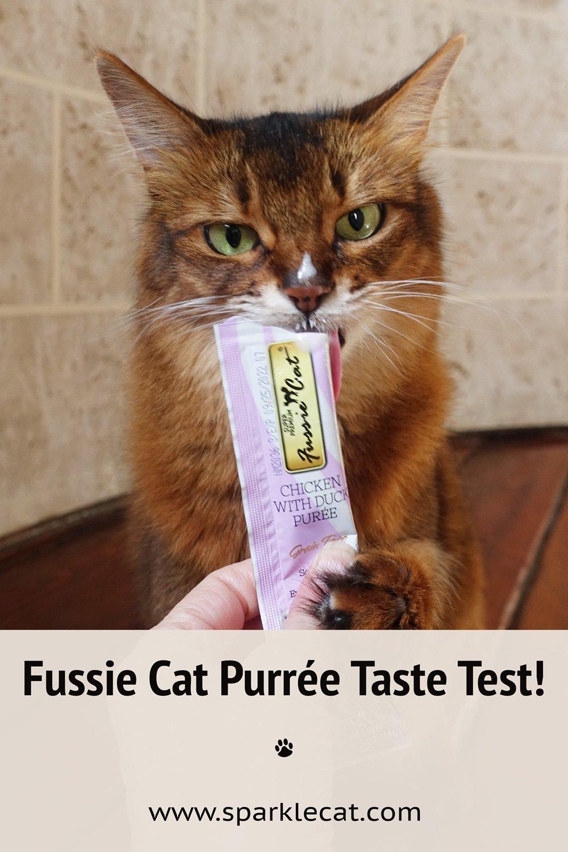 Fussie Cat Purée Taste Testing