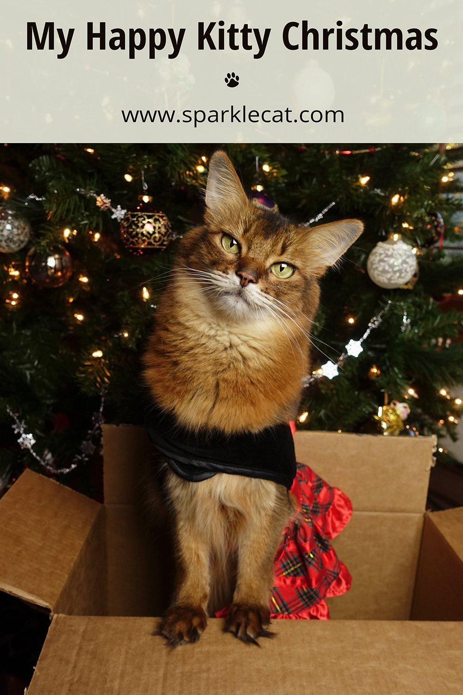My Happy Kitty Christmas