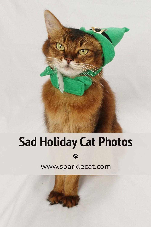 Uninspired Holiday Photo Shoot