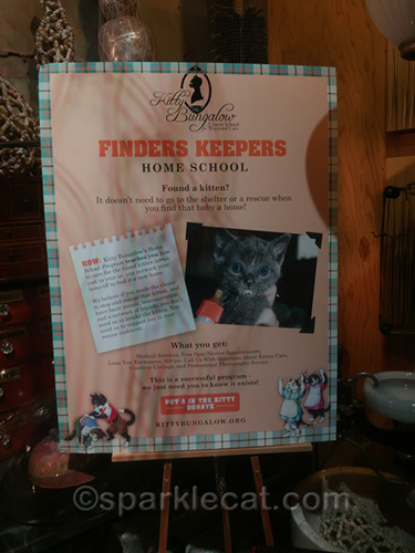 sign at Kitty Bungalow event