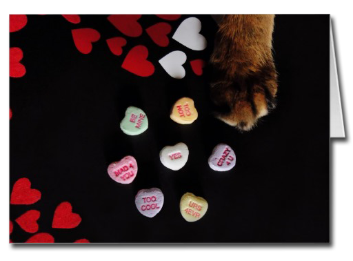 Kitty Candy Hearts Card