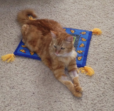 Leo is taking a magic carpet ride!