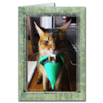 No Blarney With This St. Catrick's Day Card