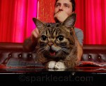 Lil BUB and her dude, Mike Bridavsky