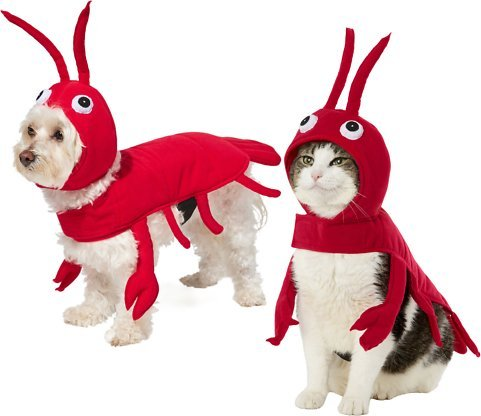 Frisco Red Lobster dog and Cat costume