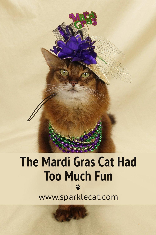 Messy Mardi Gras Photo Session