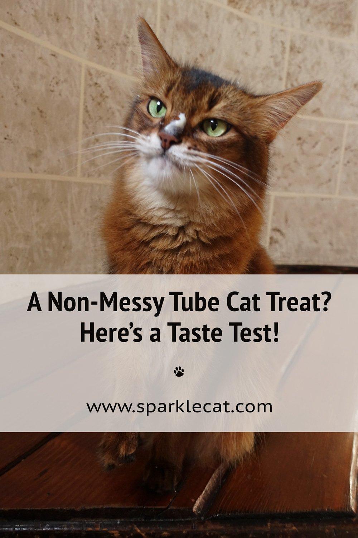 My Cat Treat Tube Taste Test!