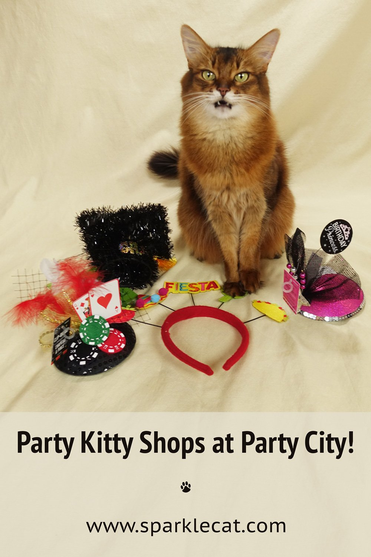 Party City Kitty