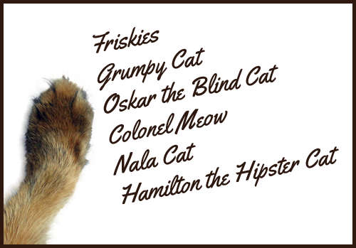 You all rule - thanks for helping kitties in need!