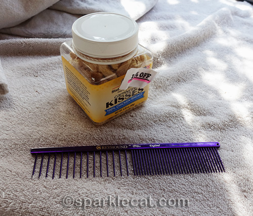 cat treats and a wide-toothed greyhound comb - tools for grooming cats