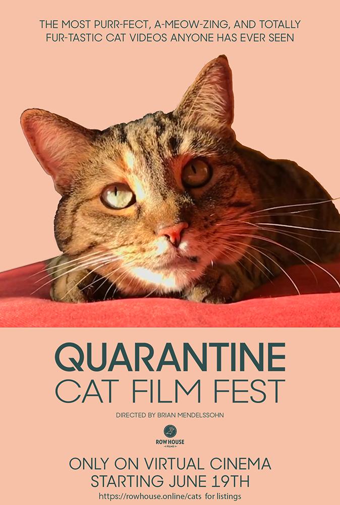Quarantine Cat Film Fest poster