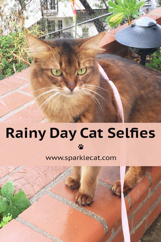Rainy Day Selfies