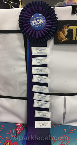 pet expo finals for blue somali alter