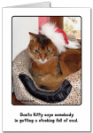 Kitty Christmas and Holiday Cards From My Shop!