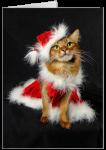Summer's Santa's Little Helper Card