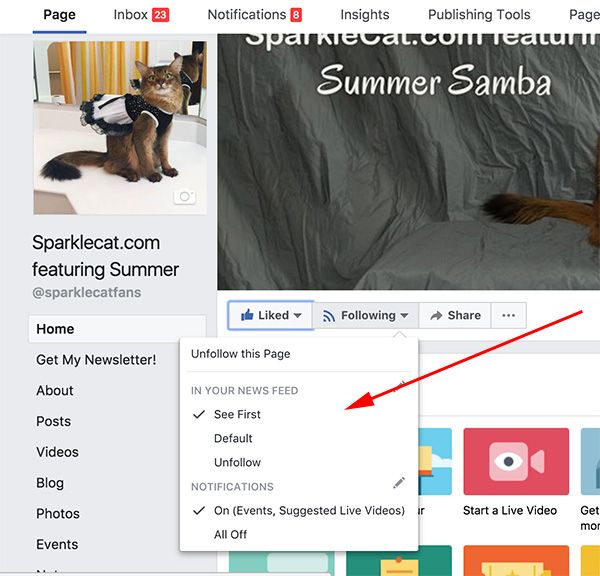 how to see Summer's page first