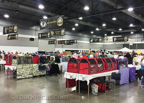 about a quarter of the cats at the CFA International Cat Show