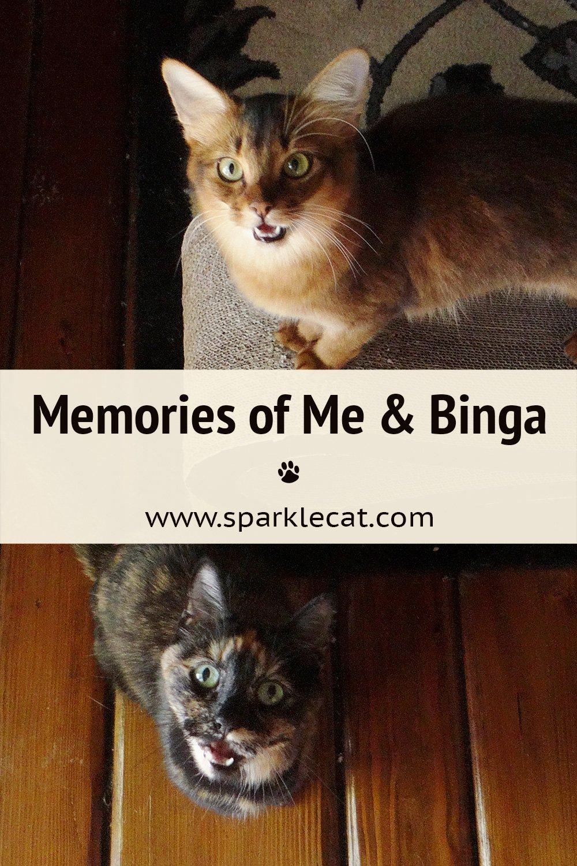 Me and Binga - The Early Days