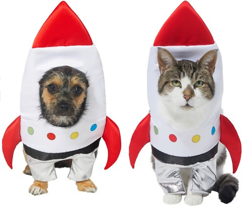 Frisco front walking  space ship dog and cat costume