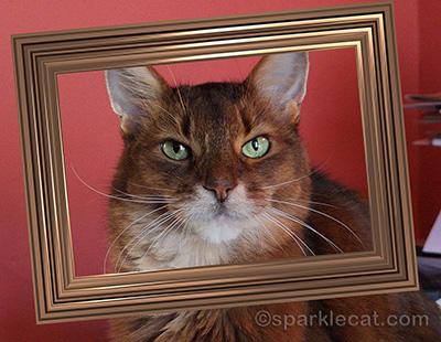 I was framed!