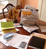 Politely examining his paperwork
