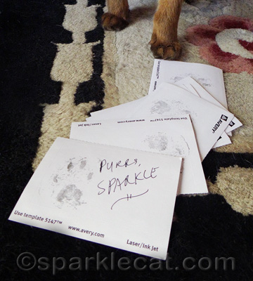 When I have book signings, my paws get really tired!