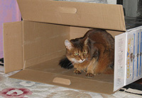 There are some boxes you can't do anything with