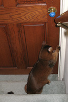 Let me outta here - now!