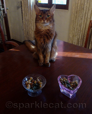I paw-picked these treats especially for you!