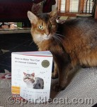 Internet Celebrity Cat Book Gives Up Feline Secrets!