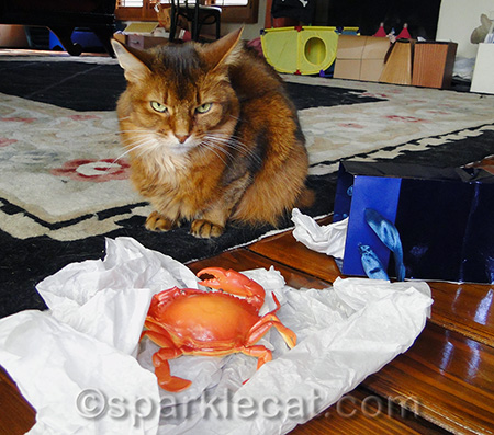 I think I would have made a face at that crab too
