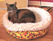 MY cat bed