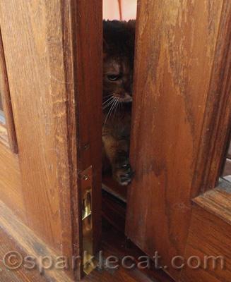 Somebody help me get this door open!