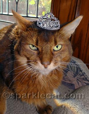 Crown yes, tiara no!