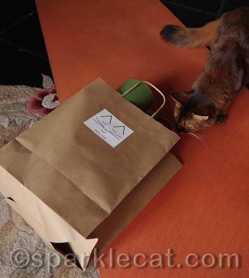 A bag AND a gift!