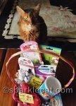 Cat World Domination Day (Also My Birthday)